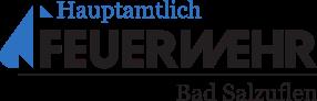 Logo Hauptamtliche Kräfte